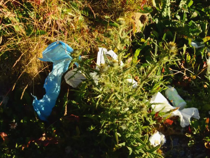 Say No to Plastics